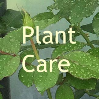 Garden Center in Newland NC | Garden Supplies, Landscaping Services